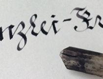 Federn Quills Thumb
